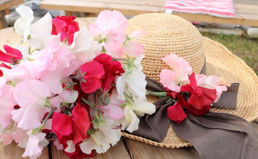 甘い香りに誘われて。スイートピーの花摘み体験で春を満喫!!