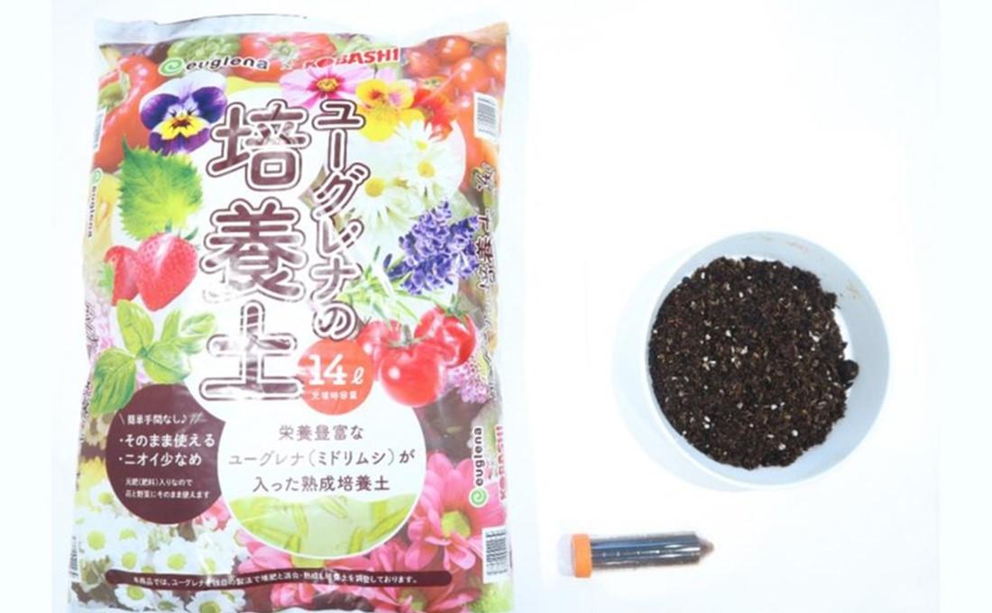 ミドリムシ入りの培養土が野菜の品質と収穫量を向上させる!