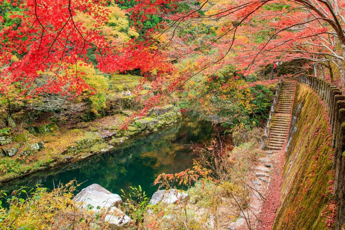 岡山で絶対見ておくべき紅葉スポット10選