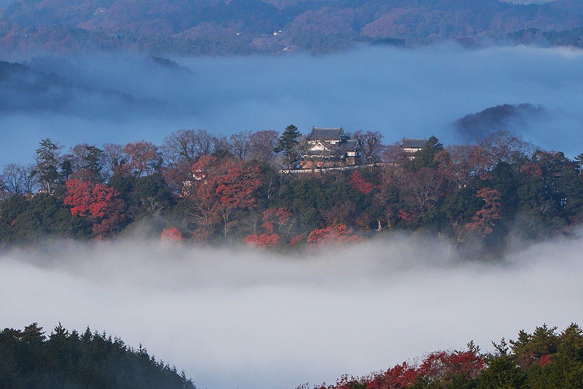 雲海シーズン到来! 一度は見てみたい岡山の絶景雲海スポット5選